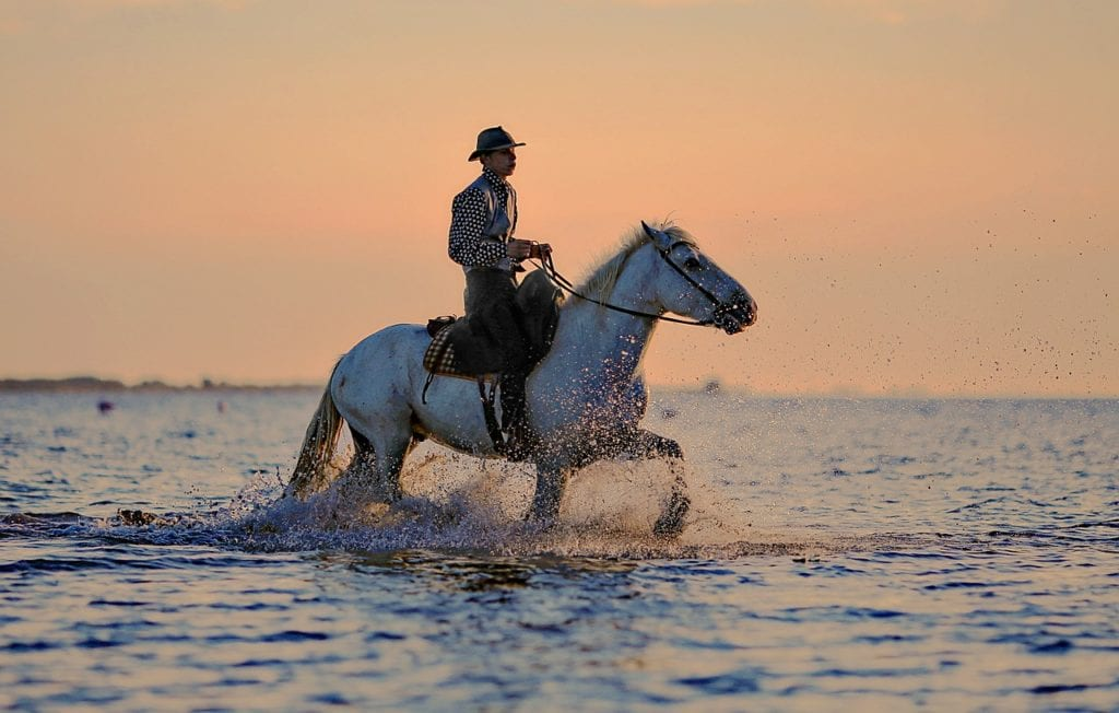 Know About Horse Riding